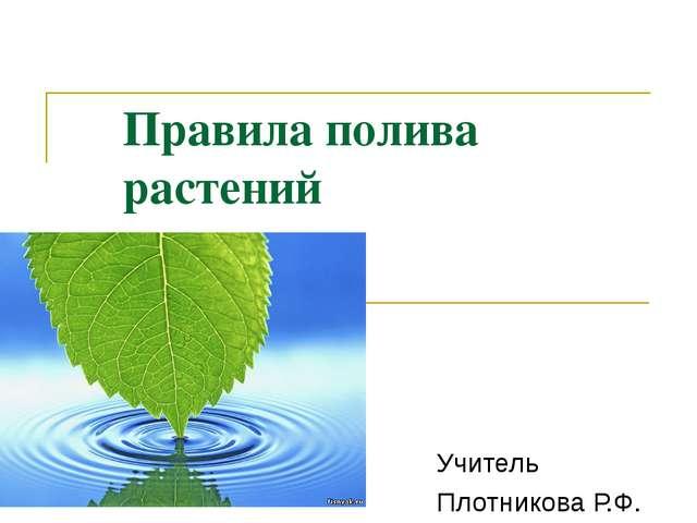 Правила полива растений Учитель Плотникова Р.Ф.