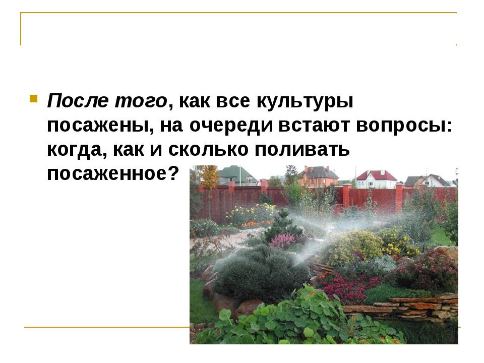 После того, как все культуры посажены, на очереди встают вопросы: когда, как...