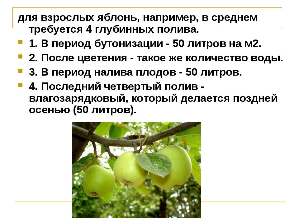 для взрослых яблонь, например, в среднем требуется 4 глубинных полива. 1. В п...