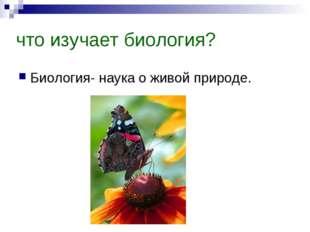 что изучает биология? Биология- наука о живой природе.