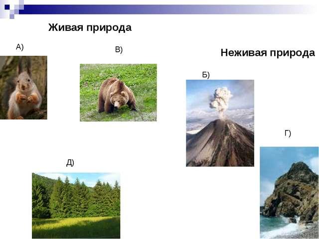 Живая природа Неживая природа А) В) Д) Б) Г)