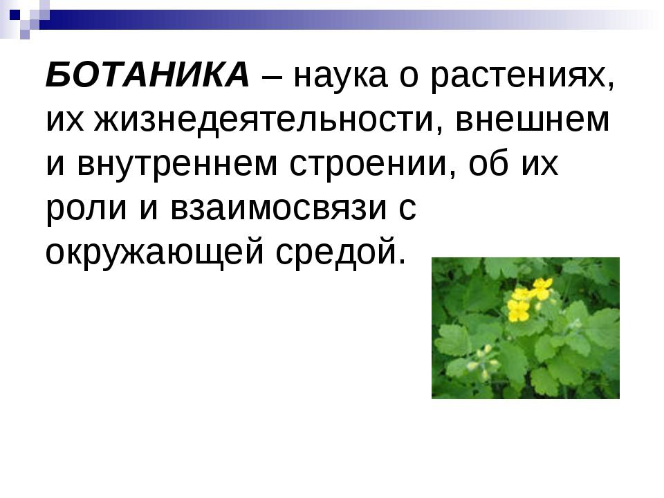 БОТАНИКА – наука о растениях, их жизнедеятельности, внешнем и внутреннем стро...