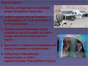 Задачи работы: Изучить литературу по проблеме вреда бездомных животных. Найти