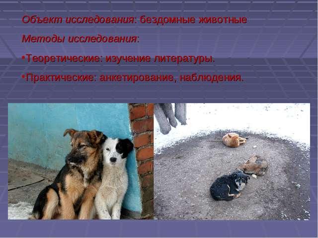 Объект исследования: бездомные животные Методы исследования: Теоретические: и...