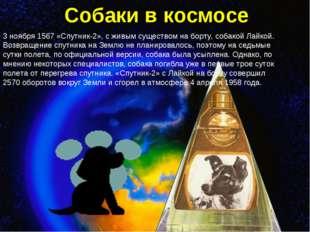 Собаки в космосе 3 ноября 1567 «Спутник-2», с живым существом на борту, собак