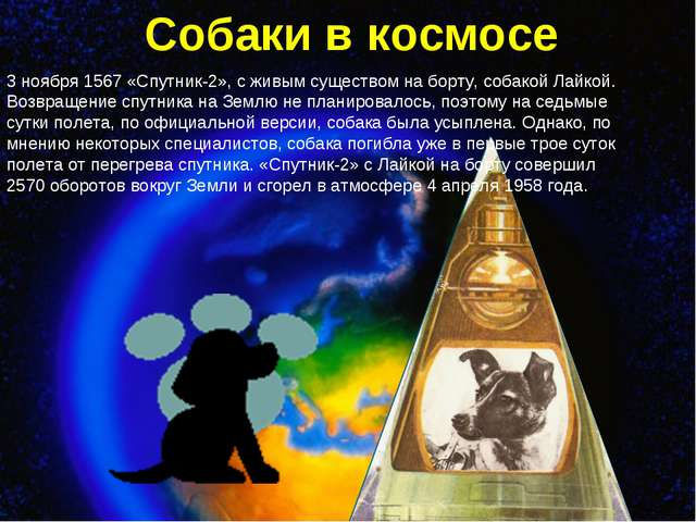 Собаки в космосе 3 ноября 1567 «Спутник-2», с живым существом на борту, собак...