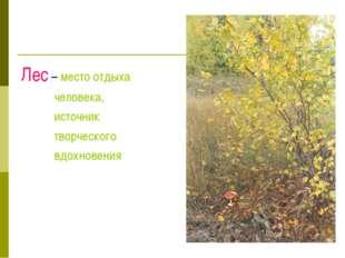 Лес – место отдыха человека, источник творческого вдохновения