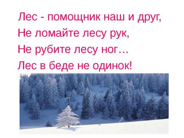 Лес - помощник наш и друг, Не ломайте лесу рук, Не рубите лесу ног… Лес в бед...