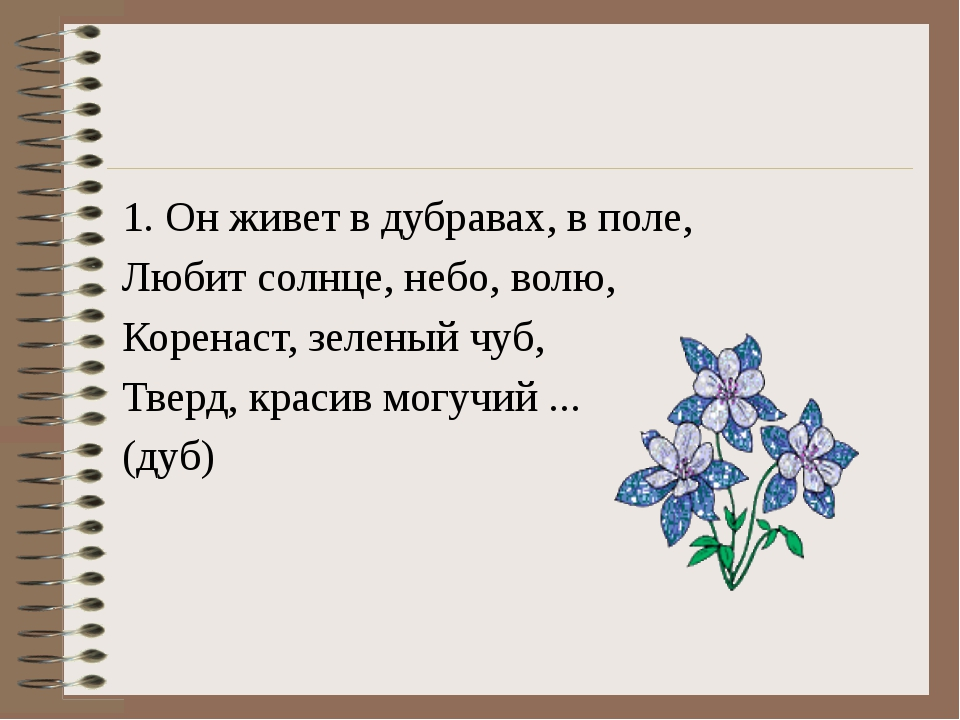 1. Он живет в дубравах, в поле, Любит солнце, небо, волю, Коренаст, зеленый...