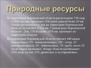 На территории Воронежской области расположено 738 озер и 2408 прудов, протека