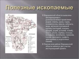 В Воронежской области выявлены месторождения и разномасштабные проявления ред