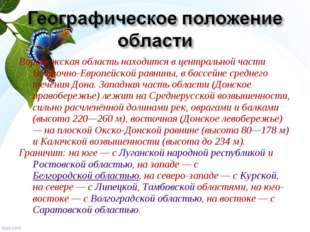 Воронежская область находится в центральной части Восточно-Европейской равнин