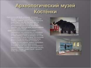 Археологический музей-заповедник «Костенки» находится в Хохольском районе Вор