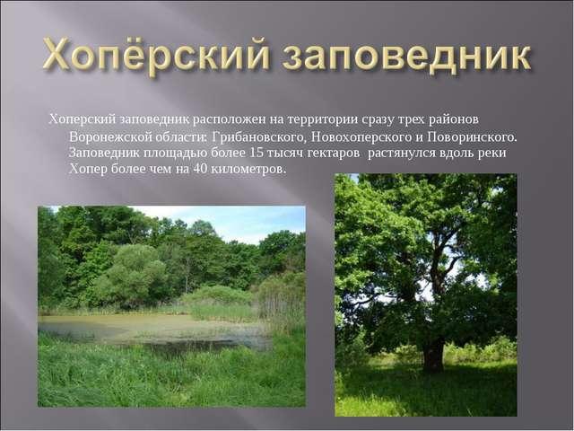 Хоперский заповедник расположен на территории сразу трех районов Воронежской...