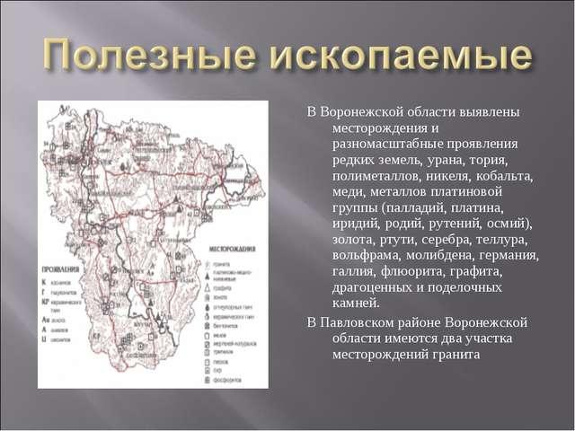 В Воронежской области выявлены месторождения и разномасштабные проявления ред...