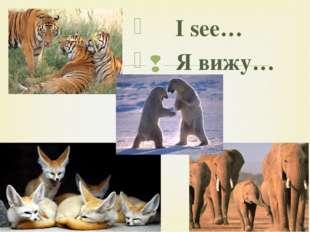 I see… Я вижу… 