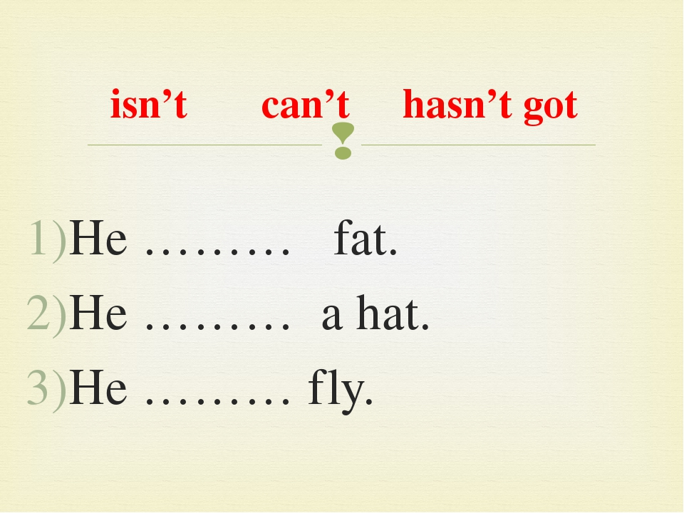 isn't can't hasn't got He ……… fat. He ……… a hat. He ……… fly. 
