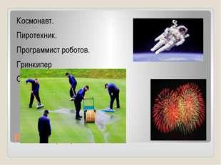 Редкие профессии Космонавт. Пиротехник. Программист роботов. Гринкипер Сортир