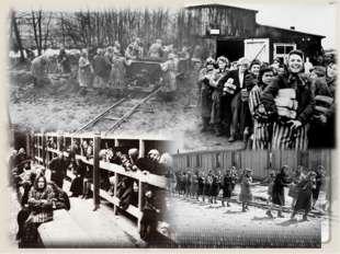 Большой женский лагерь, построенный на территории Германии. 92700 женщин и де