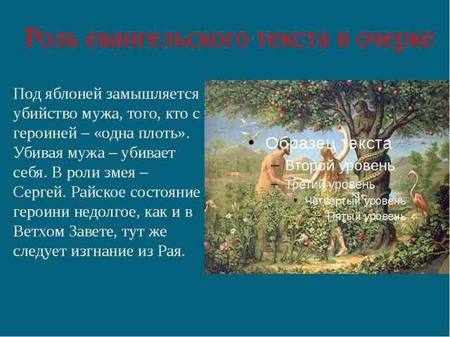 Роль евангельского текста в очерке Под яблоней замышляется убийство мужа, тог...