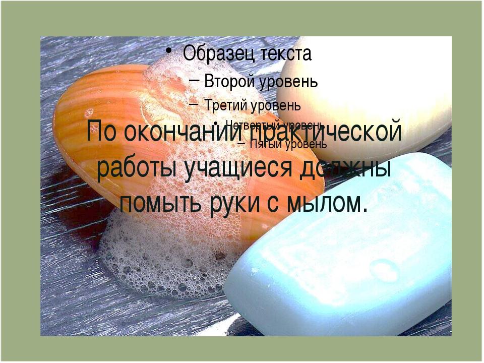 По окончании практической работы учащиеся должны помыть руки с мылом.