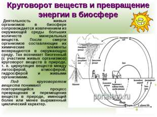 Круговорот веществ и превращение энергии в биосфере Деятельность живых орган