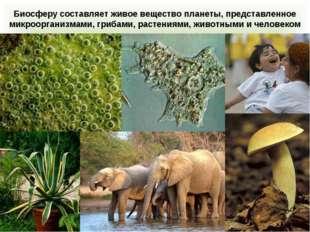 Биосферу составляет живое вещество планеты, представленное микроорганизмами,