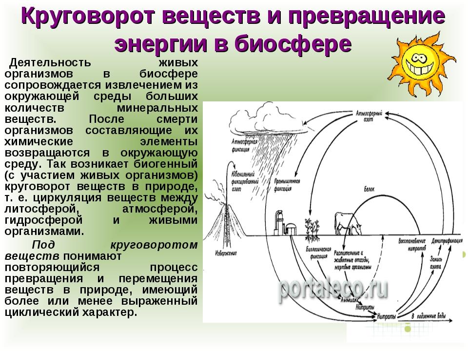 Круговорот веществ и превращение энергии в биосфере Деятельность живых орган...