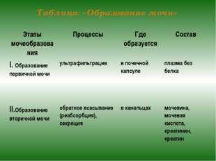 Таблица: «Образование мочи» Этапы мочеобразования Процессы Где образуется Сос