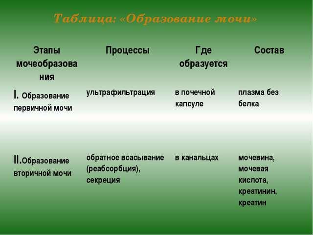 Таблица: «Образование мочи» Этапы мочеобразования Процессы Где образуется Сос...
