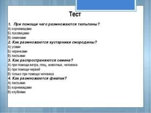 Тест При помощи чего размножаются тюльпаны? А) корневищами Б) луковицами В) с