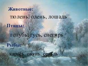 Животные: Птицы: Рыбы: тюлень, олень, лошадь голубь, гусь, снегирь карась, ок