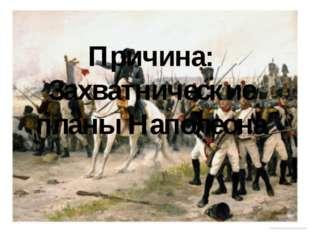 Причина: Захватнические планы Наполеона