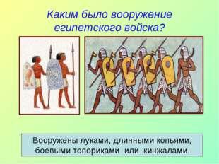 Каким было вооружение египетского войска? Вооружены луками, длинными копьями,