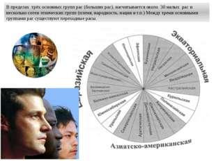 В пределах трёх основных групп рас (больших рас), насчитывается около 30 малы
