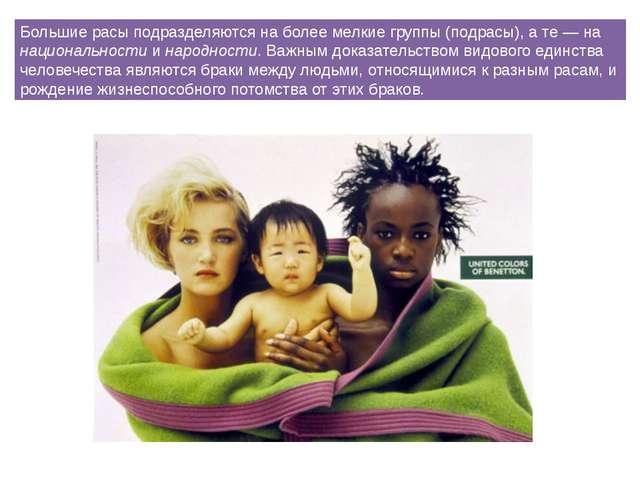 Большие расы подразделяются на более мелкие группы (подрасы), а те — на нацио...