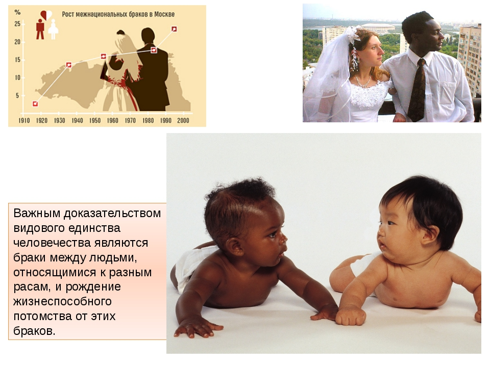 Важным доказательством видового единства человечества являются браки между лю...