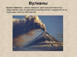 Вулканы Вулкан Шивелуч- самый северный действующий Камчатки и представляет