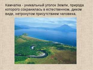 Камчатка - уникальный уголок Земли, природа которого сохранилась в естественн
