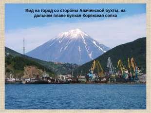 Вид на город со стороны Авачинской бухты, на дальнем плане вулкан Корякская