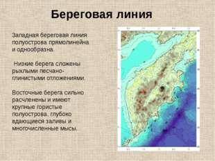 Береговая линия 3ападная береговая линия полуострова прямолинейна и однообраз