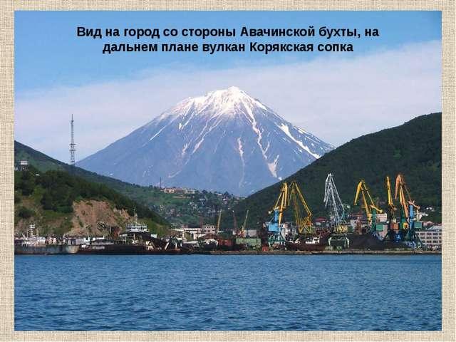 Вид на город со стороны Авачинской бухты, на дальнем плане вулкан Корякская...