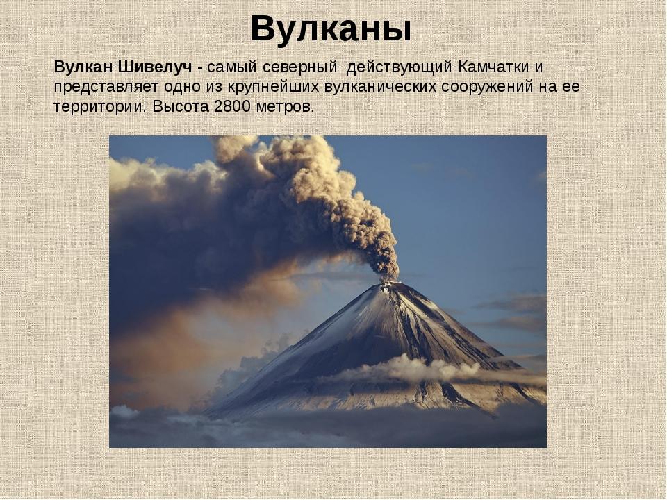 Вулканы Вулкан Шивелуч- самый северный действующий Камчатки и представляет...