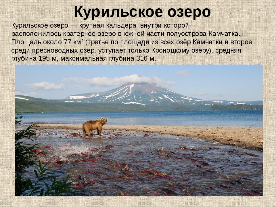 Курильское озеро— крупнаякальдера, внутри которой расположилоськратерное о...
