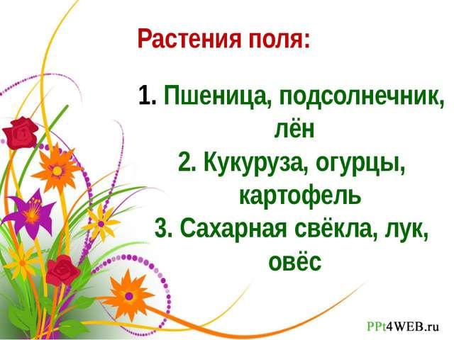 Растения поля: Пшеница, подсолнечник, лён 2. Кукуруза, огурцы, картофель 3. С...