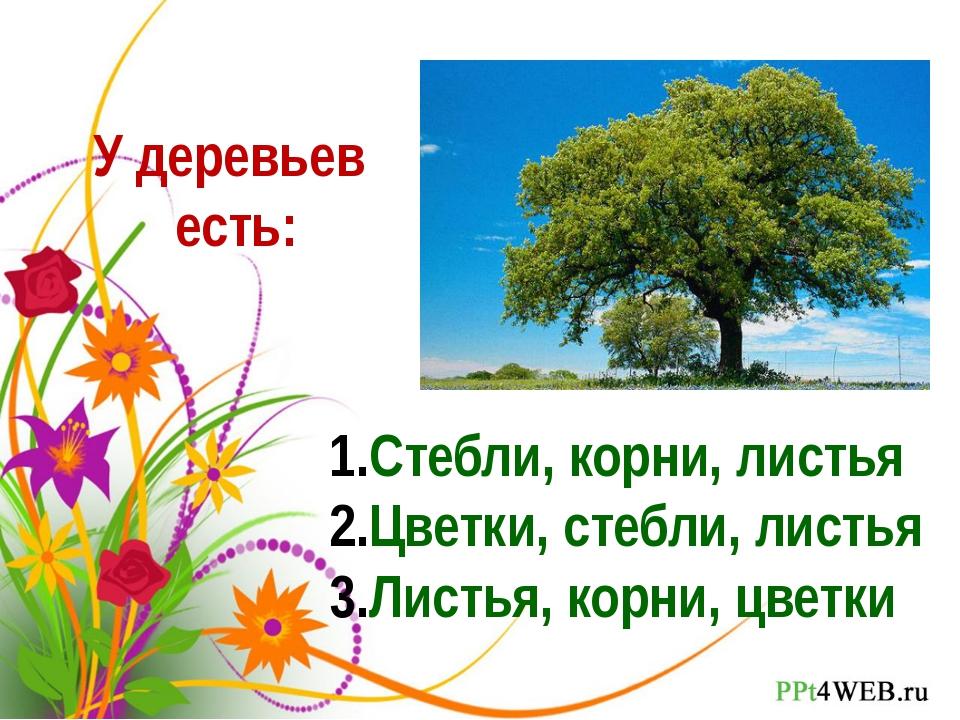 У деревьев есть: Стебли, корни, листья Цветки, стебли, листья Листья, корни,...