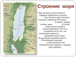 Море является частью Великого Сирийско-Африканского разлома. Оно состоит из д