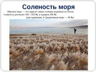 Мёртвое море— это один из самых солёных водоёмов на Земле, солёность достига