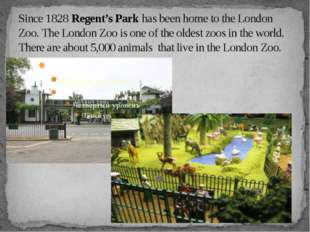 Since 1828 Regent's Park has been home to the London Zoo. The London Zoo is o