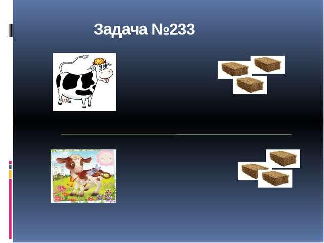 Задача №233